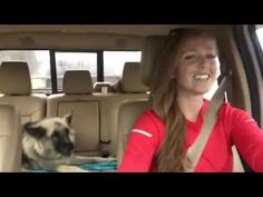 """Lola the Shiloh shepherd belts it out to Queen's """"We Are The Champions"""" on a road trip with her owner, Annie. Better singing voice than most people!!"""