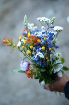 wildflowers bouquet - Google'da Ara