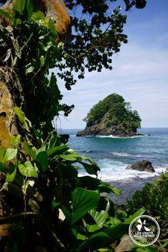 Ile déserte, Nature à Capurgana Colombie / #colombia