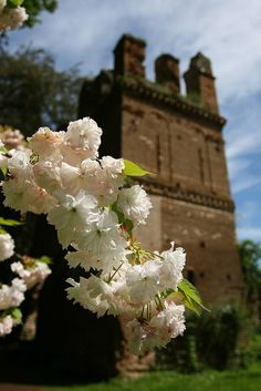 Spring in Ninfa, Latina, Lazio, Italy