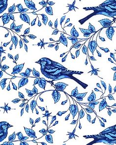 Blue & White - Birds on the Vine - Quilt Fabrics from www.eQuilter.com