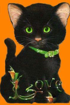 * * * * * With Love To You On St. Patrick's Day~ c.c.c~ Чёрный котик