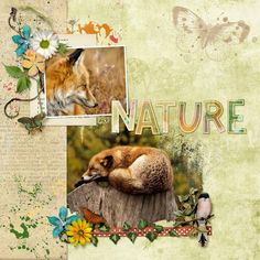 Nature Lover Collab by The Urban Fairy and Heartstrings Art Scrap  stock photos from Pixabay