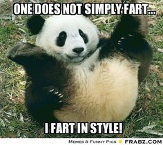 One does not simply fart...... - Rolling Panda Meme Generator Captionator