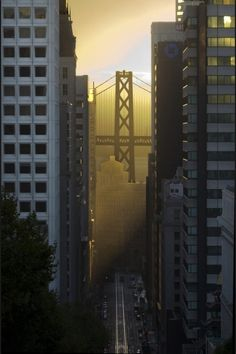 San Francisco.  this is one of  my fave views, and I'm going to miss it when it's gone.