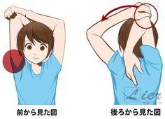 二の腕,ダイエット,二の腕痩せ,上腕三頭筋,鍛え方,エクササイズ,筋トレ,細くする