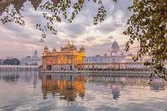 Guru Granth Sahib Quotes, Shri Guru Granth Sahib, Beautiful Gif, Beautiful Places, Golden Temple Wallpaper, Guru Nanak Wallpaper, Guru Nanak Ji, Harmandir Sahib, Indian Temple Architecture