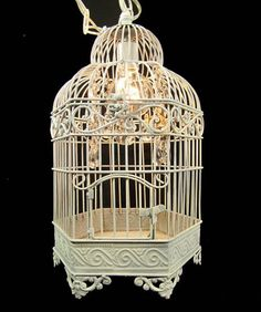 I actually have a birdcage I could use to make this Chandelier.
