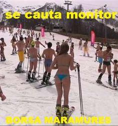iarna ski - izoleaza termic - casuta ta -   ia licenta de monitor ski - nu poti cistiga sub una suta dolari pe zi -