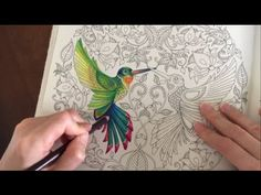 Coloring Tutorial: The Hummingbird (Part 5/5) - YouTube