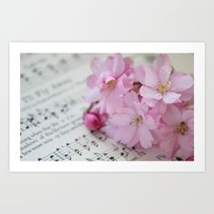 Song of the Cherry Blossom - $29
