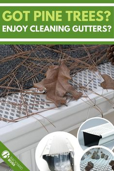 Stay safe and save time by protecting your gutters with a gutter guard. If you're dealing with debris from pine trees, you'll need a special guard that can keep the fine needles out. We'll show you which gutter guards work best against pine needles and help you pick the one that will work best for you and your house. #gutterguard #pineneedles #homemaintenance #guttercleaning #leaffilter Rain Gutter Guards, Gutter Protection, Leaf Filter, Drip Edge, Pine Needles, Stay Safe, Clever, Trees, Backyard