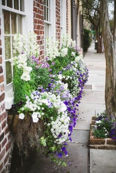 Window Box Style! | The Well Appointed House Blog: Living the Well Appointed Life