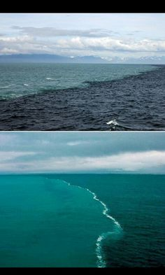 North sea and the Baltic sea meet! I would love to go!