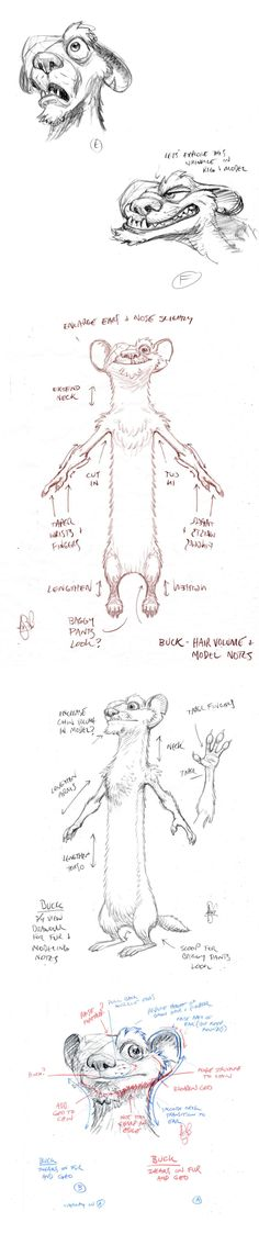 Buck, Peter de Sève. Weasle from Ice Age Dawn of the Dinosaurs Concept art sketches