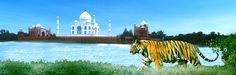You can book Luxury India Tours provides the best affordable price. http://www.samindiatours.com/