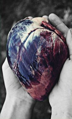 the heart is soo beautiful