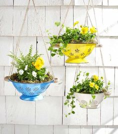 10 Incredibly Creative DIY Garden Planters Hang spring flowers in brightly colored colanders for an unexpected and truly unique way to update your porch. The post 10 Incredibly Creative DIY Garden Planters appeared first on Garden Easy. Diy Planter Box, Diy Planters, Garden Planters, Planter Ideas, Patio Plants, Plants Indoor, Hanging Planters Outdoor, Balcony Garden, Flower Planters