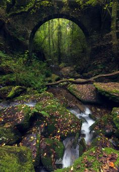 One of my favourite places to capture the essence of nature in Galicia, Spain I Jose Gadea Amazing Gifs, Secret Places, Travel Around, Land Scape, Perfect Place, Places To See, Cool Photos, Travel Destinations, Waterfall