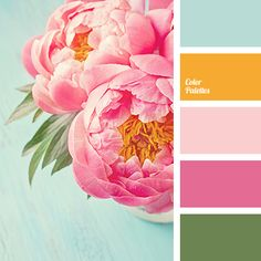 Color Palette #2791 More
