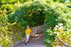 Five Chicagoland spots to fuel your child's love of nature and the outdoors