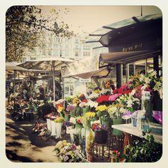 The lovely open-air Flower market, Plaza del Ayuntamiento, Valencia. Photo by Stella Marega #valencia #mytravelgram