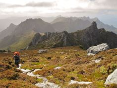 The highlands of Tasmania