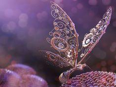 Bild könnte enthalten: Blume