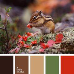 color ardilla rayada, color bosque otoñal, color claro del bosque, color marrón oscuro, color ocre, color serba, color verde bosque, combinación de colores para decorar interiores, elección del color, marrón, rojo y verde, selección de colores para el diseño de interiores, tonos marrones.