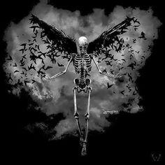 Fly skull
