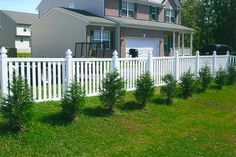fences and gates   Planning Your Pool Fence :: Pool Fence Codes in Maryland and Virginia