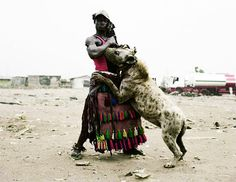 Image result for giant hyena