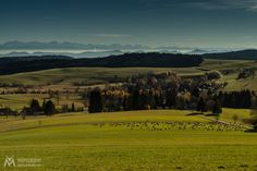 Swiss Alps from the Black Forest by Andreas Müller - Photo 128179887 - 500px