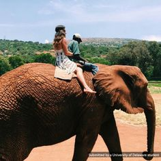 UD Student, Holt Querey, studying nursing in South Africa, visits an Elephant Sanctuary. #UDAbroad