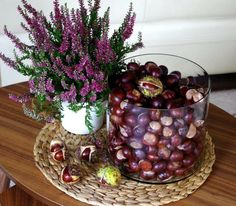 Heather plant and vase with chestnuts Heidek .- Heidekraut Pflanze und Vase mit Kastanien Heidekraut Pflanze und Vas… Heather plant and vase with chestnuts Heather plant and vase with chestnuts - Fall Crafts, Diy And Crafts, Heather Plant, Creation Deco, Deco Floral, Deco Table, Fall Diy, Decoration Table, Wedding Decoration