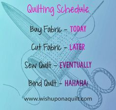 Buy Fabric - Today Cut Fabric - Later Sew Fabric - Eventually Bind Fabric - HAHAHA Sounds about right. Wednesday Quilt Humor...