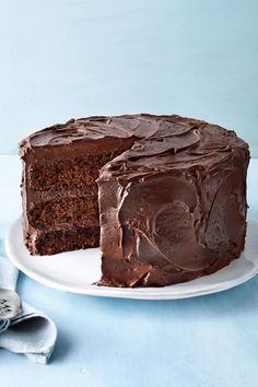 Every Southerner is too far gone in the delicious chocolate cake that he or she couldn't care less that mayonnaise is the secret anyway. Cake Recipes From Scratch, Best Cake Recipes, Favorite Recipes, Dessert Recipes, Cupcakes, Cupcake Cakes, Mississippi Mud Cake, Southern Pound Cake, Dessert Halloween
