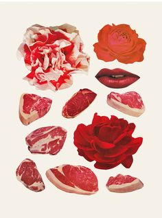 Meat & Roses by Beth Hoeckel