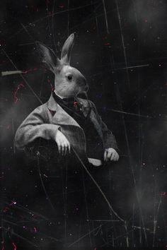 Mr. Rabbit by ManonMorel.deviantart.com on @deviantART: