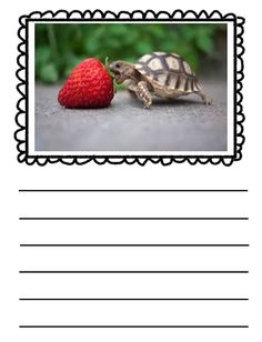 """My students need help writing letters neatly on the line. I decided to go to TpT and search for a """"Letter Formation . Writing Pictures, Kindergarten Rocks, Writing Letters, Letter Formation, Writer's Block, Daily 5, Library Ideas, Literacy Centers, Writing Prompts"""