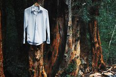 On or about October 17th, 1999, in a swamp located just off U.S. Route 70 in Brick, New Jersey, someone hung 17 mens dress shirts across a small patch of dead trees. The shirts were white, pressed and clean. Each one was hanging about 20 feet up, fastened to the tree with nails. Twelve days later, the number of shirts increased to 29, hung in the exact same manner. No one has ever determined who placed the shirts there or why.