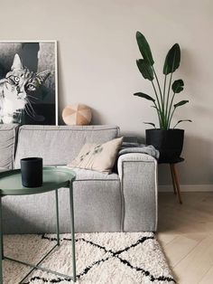 Living Room Trends, Interior Design Living Room, Living Room Designs, Living Room Decor, Bedroom Decor, Good Living Room Colors, Elegant Living Room, Green Lounge, Cosy Room
