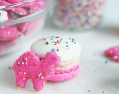 Homemade macarons make any day better, but these circus animal macarons bring a whole new level of joy. Get the recipe: Circus Animal macarons Cookie Flavors, Cookie Recipes, Animal Cookies Recipe, Frosted Animal Crackers, Homemade Macarons, Circus Cookies, White Chocolate Ganache, Cookie Frosting, Cute Cookies