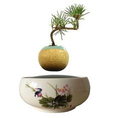 Style: Modern Material: Ceramic Model Number: Used With: Flower/Green Plant Ceramic Type: Porcelain Usage Condition: Desktop Finishing: Glazed Type: Pots, air bonsai Green Plants, Potted Plants, Floating Plants, Herbs Indoors, Garden Gifts, Plant Design, Modern Materials, Home Decor Items, Bonsai