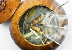 Elotitos con mayonesa de chicatana - a smoke-filled pumpkin dish
