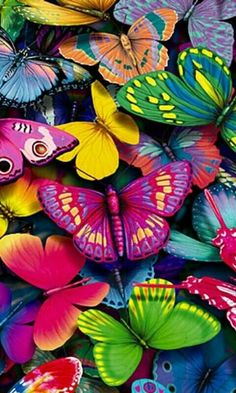 Details about Colorful Butterflies Bright Bold Unique New Wall Art Girls light…