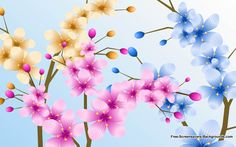 Flower Backgrounds   Flowers   Free Screensavers and Backgrounds