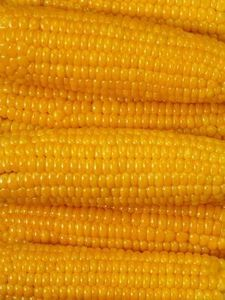 How to Bake Corn on the Cob in the Oven With Tin Foil