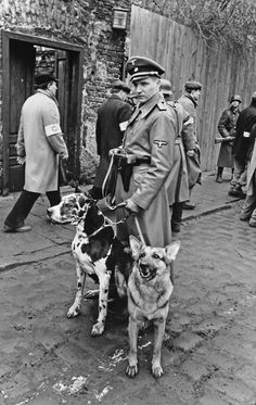 "Ralph Fiennes - ""Schindler's List"", 1993, dogs, uniform, nazi, history of 2 world war, soldiers in the background, never forget."