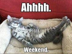 Saturday Feeling